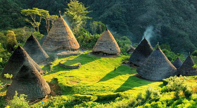 Komodo Explore and Wae Rebo Village tours 6 Days 5 Nights
